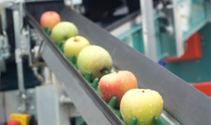 Engineering Plastics for Food Processing